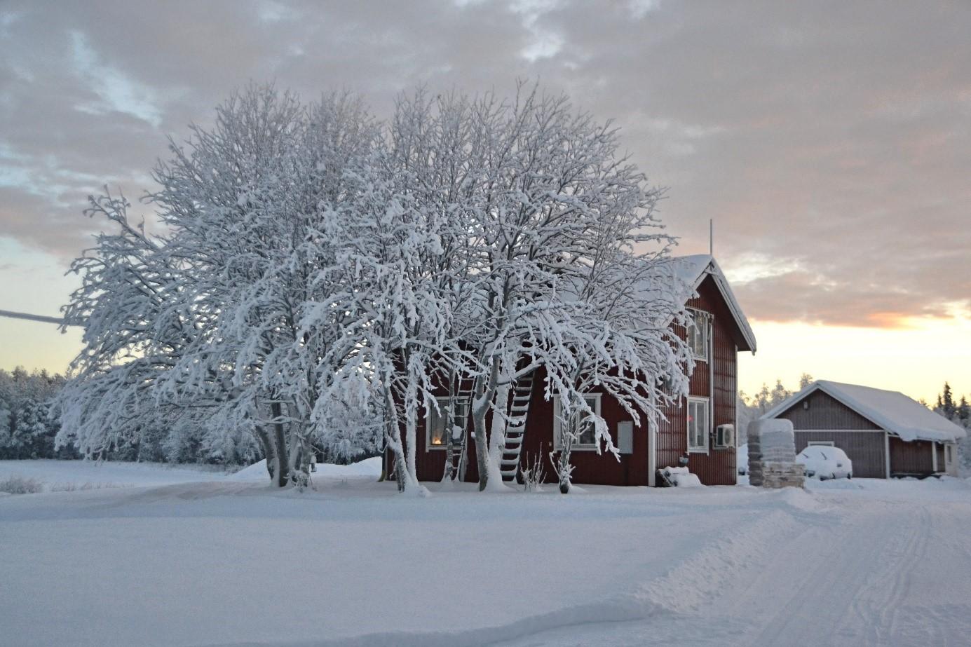 Suede paysage d'hiver